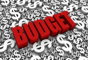Some expenses to include in your 2014 budget include tax fees, membership fees and the costs of medical bills you anticipate for the New Year.