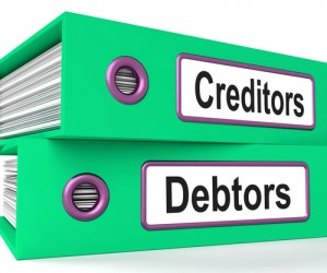 According to the FCRA, borrowers' rights include the right to know the details of their credit report and to dispute inaccurate information on these reports.